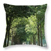 Dutch Landscape - Country Road Throw Pillow by Carol Groenen