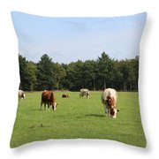 Dutch Landscape With Cows Throw Pillow