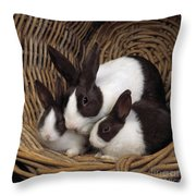 Dutch Rabbit With Young Throw Pillow by E A Janes