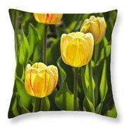 Dutch Yellow Tulip Flowers On Windmill Island In Holland Michigan Throw Pillow