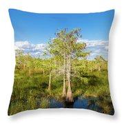 Dwarf Cypress Trees In A Field Throw Pillow