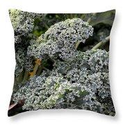 Dwarf Kale Throw Pillow