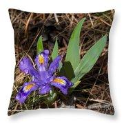 Dwarf Lake Iris Throw Pillow
