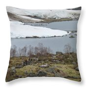 Dwarfed By Nature Throw Pillow