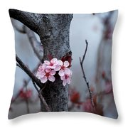 #dwellonthebeautyoflife Throw Pillow