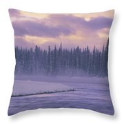D.wiggett Kluane Np, Scenic, Yt Throw Pillow