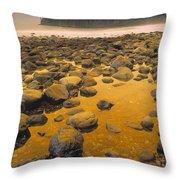 D.wiggett Rocks On Beach, China Beach Throw Pillow by First Light