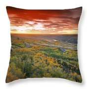 D.wiggett View Of Dry Island, Buffalo Throw Pillow