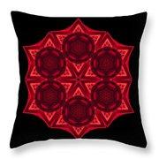 Dying Amaryllis IIi Flower Mandala Throw Pillow