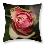 Dying Rose Throw Pillow