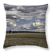 Dynamic Farmland Landscape Throw Pillow