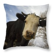 E I E I O Throw Pillow
