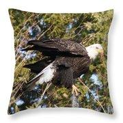 Eagle 1982 Throw Pillow