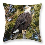Eagle 1985 Throw Pillow