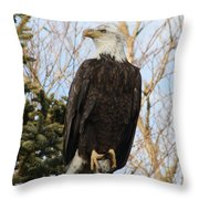 Eagle 1991a Throw Pillow