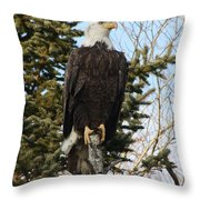 Eagle 3 Throw Pillow