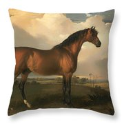 Eagle - A Celebrated Stallion Throw Pillow