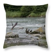Eagle And Its Prize Throw Pillow