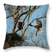 Eagle And The Fish 2 Throw Pillow