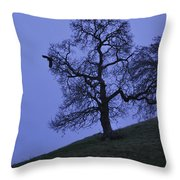 Eagle And The Oak Throw Pillow