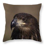 Eagle Beauty Throw Pillow
