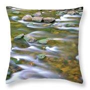 Eagle Creek Oregon Throw Pillow