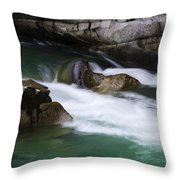 Eagle Creek Washington 3 Throw Pillow