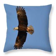 Eagle Flight 4 Throw Pillow