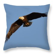 Eagle Flight 6 Throw Pillow