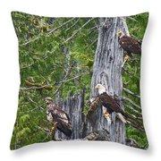 Eagle Gang Throw Pillow