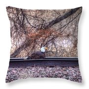 Eagle Has Landed Throw Pillow