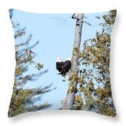 Eagle Heart Throw Pillow