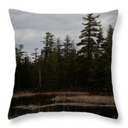 Eagle Home Throw Pillow