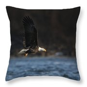 Eagle Ice Glide Throw Pillow