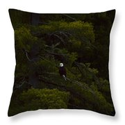 Eagle In The Green Throw Pillow