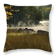 Eagle Lake Sunrise Throw Pillow