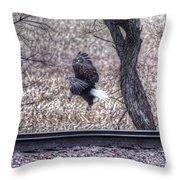 Eagle Landing 2 Throw Pillow