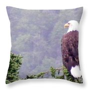 Eagle Looking For Breakfast On A Misty Morning Throw Pillow