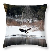 Eagle On The Shoreline Throw Pillow