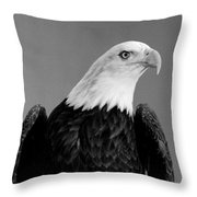 Eagle On Watch Black And White Throw Pillow