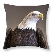 Eagle On Watch Throw Pillow