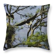 Eagle Pair And Nest Throw Pillow