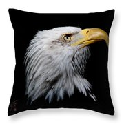Eagle Portrait II Throw Pillow
