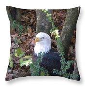Eagle Pose Throw Pillow