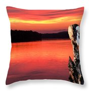 Eagle Preening Early Throw Pillow