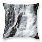 Eagle River Falls Throw Pillow