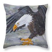 Eagle Study 2 Throw Pillow
