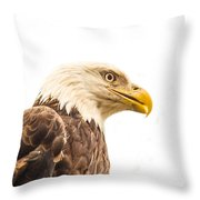 Eagle With Prey Spied Throw Pillow by Douglas Barnett