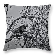 Eagles Along The Mississippi 2 Throw Pillow