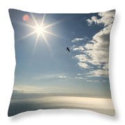 Eagles And The Sea Throw Pillow